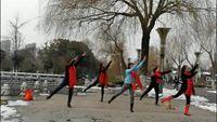 鳳凰廣場舞《中國歌最美》 口令分解動作教學演示
