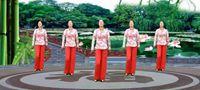 代玉廣場舞《啞巴新娘》簡單入門舞16步 原創附正背面教學口令分解動作演示