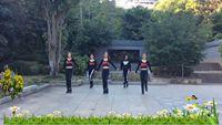 廣西湘兒廣場舞《天越藍我就越想你》團隊版 原創附正背面教學口令分解動作演示