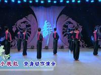 応子廣場舞  小桃紅 背面展示附正背面口令分解教學演示