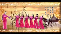 湖南和諧廣場舞《國韻》 正背面演示及口令分解動作教學和背面演