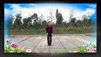 飛躍廣場舞藏舞《唐古拉》原創編舞秦來財老師附正背面口令分解教學演示