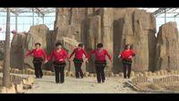 西粉營廣場舞《紅歌連跳》 正背面演示及口令分解動作教學和背面演