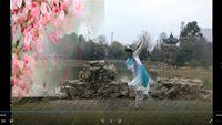 古典舞《半壺紗》編舞:孫科;梅蘭蓮菊舞蹈隊 口令分解動作教學