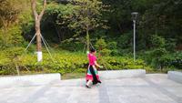 深圳花之緣舞隊夢中的媽媽表演個人版 原創附正背面教學口令分解動作演示