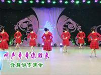 刘荣舞蹈 叫声哥哥你快回来 背面展示附正背面口令分解教学演示