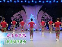 刘荣舞蹈 纳木错情歌 背面展示 正背面演示及口令分解动作教学和背面演