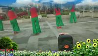 福建浦城官路健身快乐舞蹈队情醉桃花源表演团队版 正背面演示及口令分解动作教学