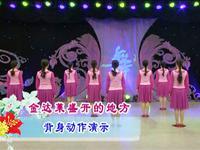 応子廣場舞 達萊盛開的地方 背面展示 完整版演示及口令分解動作教學