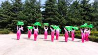 洛陽市高新區華夏藝術團蓮的心事表演團隊版 正背面演示及口令分解動作教學和背面演