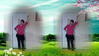 漓江阿梅舞蹈《网上这段缘》完整版演示及口令分解动作教学