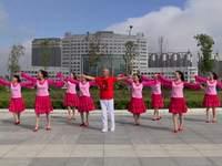 吉林飞燕林间梦幻舞蹈 歌在飞 表演 经典正背面演示及口令分解动作教学