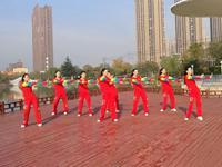 安徽绿茶飞舞舞蹈 康定情人 正背面表演与动作分解 口令分解动作教学