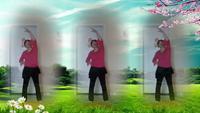 漓江阿梅舞蹈《十送红军》完整版演示及分解教学演示