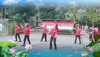 南昌新祺周社区阿珍蓝色天梦表演团队版 完整版演示及分解教学演示