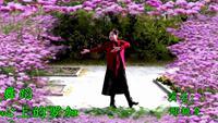 維碧舞團心上的羅加11.3邢艷芝表演個人版 口令分解動作教學演示