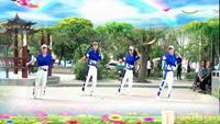 河南清心队《飞扬一套》表演团队版 经典正背面演示及口令分解动作教学