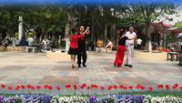 馬到成功,東方之珠,侯艾元,譚紅香慢四造型表演團隊版 正背面演示及慢速口令教學