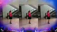 一生平安u365《高清-背面-惠汝廣場舞歌在飛》正反面演示及分解動作教學