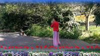 紅果夕陽紅舞蹈隊山谷里的思念表演個人版 正反面演示及分解動作教學
