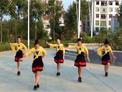 汉阴涧池玫瑰广场舞 等你等了那么久