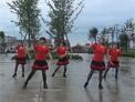 汉阴涧池玫瑰广场舞 我的新娘在草原 7人版