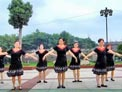 荆州电大广场舞 孔雀公主