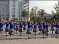 宜興綠茶廣場舞 問候你