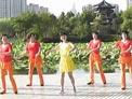 动动广场舞 竹楼姑娘 含背面演示和分解动作