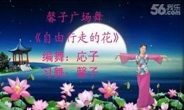 撫州馨子廣場舞《自由行走的花》編舞応子 正背面演示