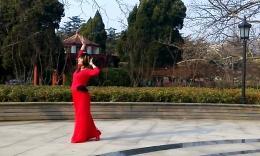 精灵宝贝广场舞《女人花》编舞董盾