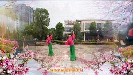 萍乡绿茵广场舞《相思引》编舞艺莞儿 正背面演示