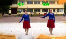 江西佩佩广场舞《贝加尔湖畔》编舞艺子龙 正背面演示