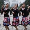 俏木兰广场舞