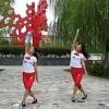 蒙城绿茶广场舞
