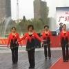濱海景湖廣場舞