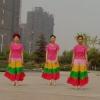 柏景灣姐妹廣場舞