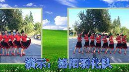 泌阳羽化广场舞《梦里青草香》编舞凤凰六哥 团队正背面演示