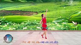 广西灵山曹曹广场舞《美丽茶山我的家》编舞香樟树 正背面教学演示