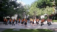 深圳梅陇广场舞《映山红》原创舞蹈 团队正背面演示