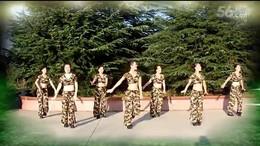天姿广场舞《映山红》编舞刘荣 团队正背面演示