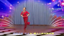 高安飞扬广场舞《想妹妹》编舞王军 附正背面口令分解教学演示