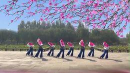 软玉广场舞《映山红》原创舞蹈 团队正背面演示