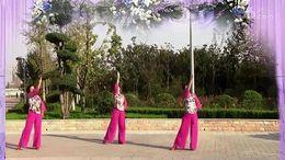舞动中原馨蕾舞蹈《葬花吟》原创舞蹈 正背面演示