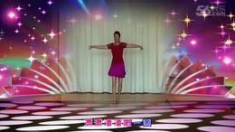 风清云淡广场舞《自在美》编舞王梅 正背面演示