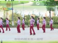 杨丽萍广场舞《溜溜的她》原创步伐舞 附正背面口令分解教学演示