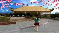安庆小红人广场舞《小葡萄》编舞黄梅飘香 附正背面口令分解教学演示