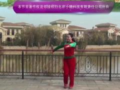 応子广场舞《幸福阳光》原创舞蹈 附正背面口令分解教学演示