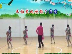 楠楠舞蹈《万水千山总是情》原创扇子舞 附正背面口令分解教学演示