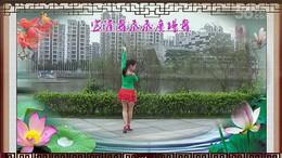 官涌舞飞飞广场舞《好一朵女人花》编舞艺子龙 正背面演示